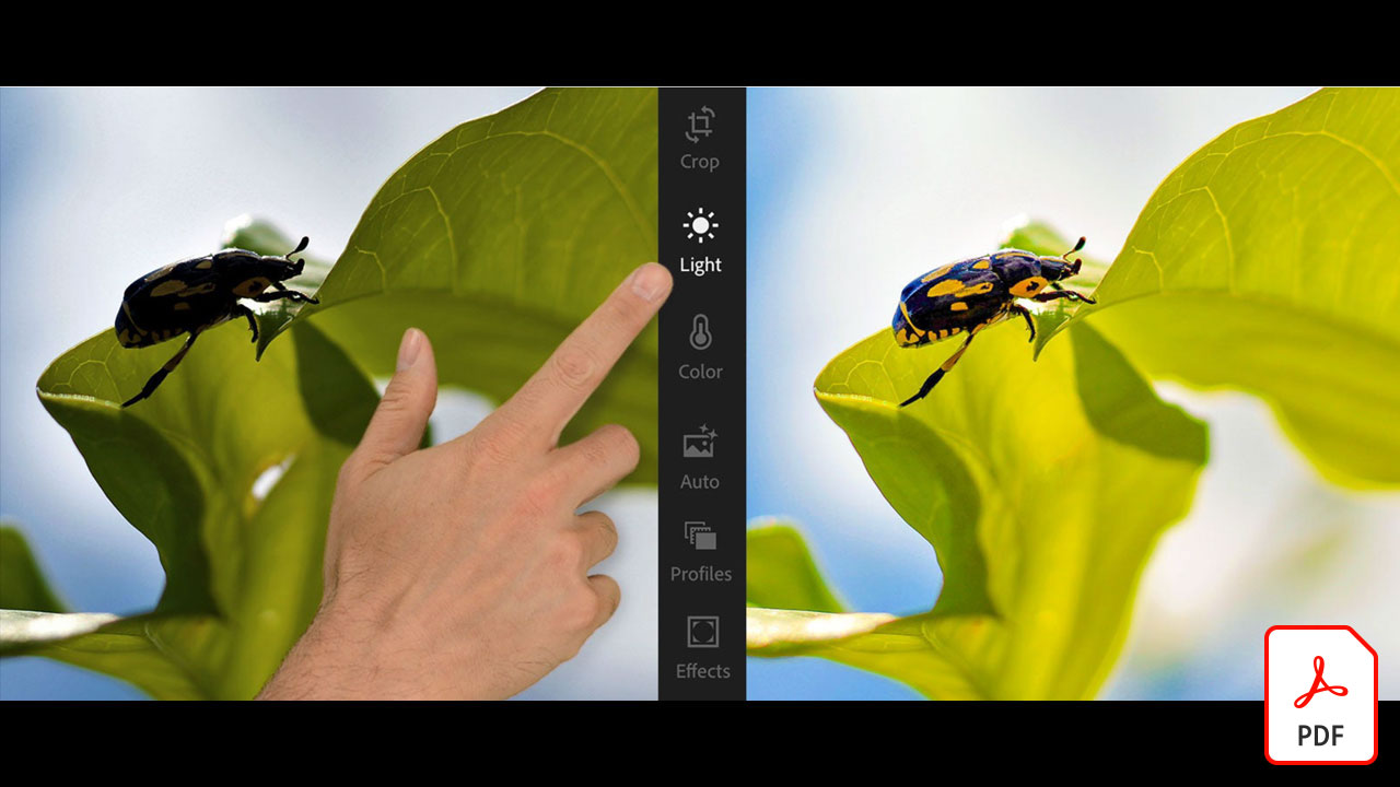 Uncover amazing details in Adobe Stock images with Lightroom for mobile