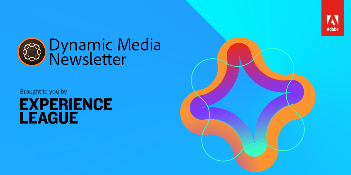Logo des Dynamic Media Newsletters