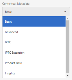 Contextual metadata component listing tabs of asset properties