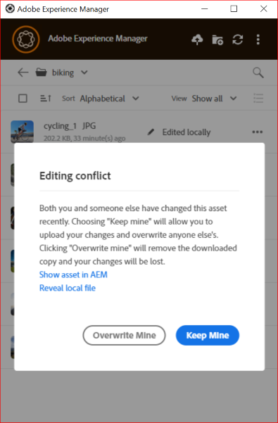 Options to resolve an editing conflict