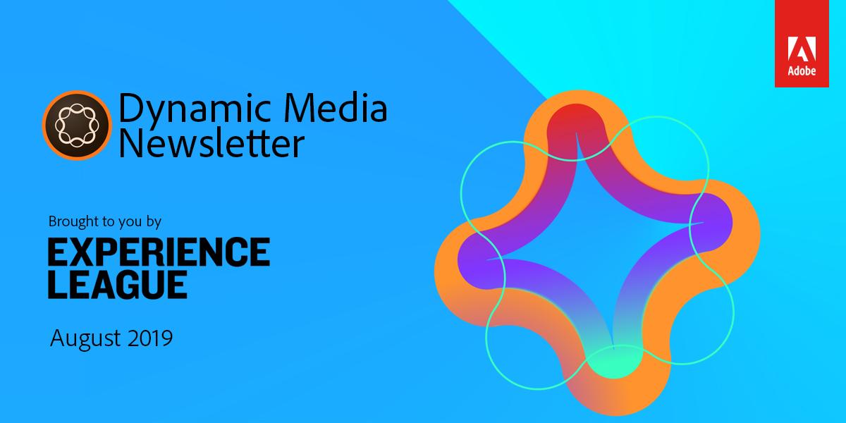 Dynamic Media Newsletter